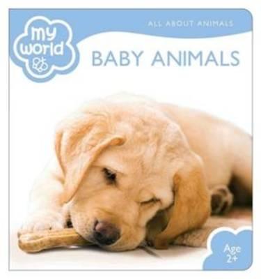 Baby Animals - My World (Hardback)