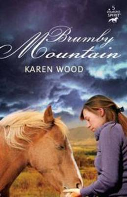 Brumby Mountain (Diamond Spirit 5) - THE DIAMOND SPIRIT SERIES 5 (Paperback)