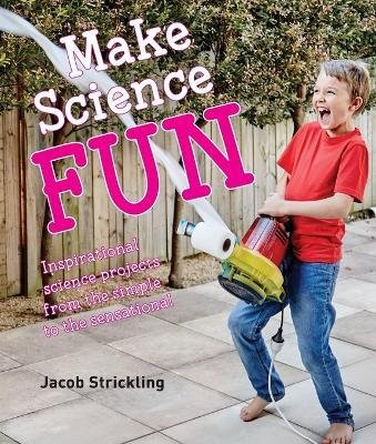 Make Science Fun (Paperback)
