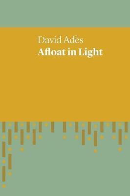 Afloat in Light (Paperback)