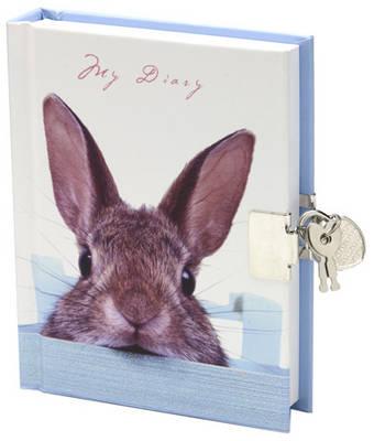 Lock-Up Diary: Sneaky Bunny