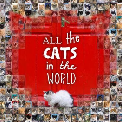 All the Cats in the World (Hardback)