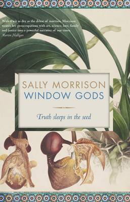 Window Gods: Truth Sleeps in the Seed (Paperback)