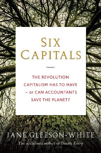 Six Capitals: The Revolution Capitalism Has to Have - or Can Accountants Save the Planet? (Hardback)
