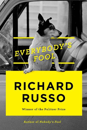 Everybody's Fool (Hardback)