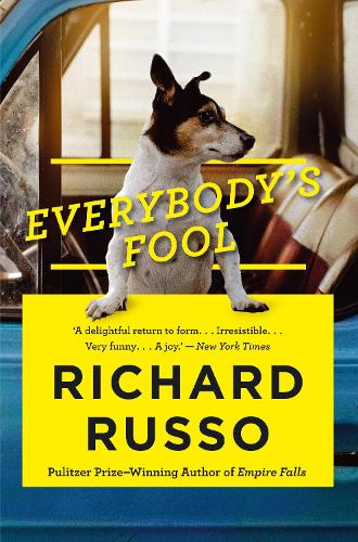 Everybody's Fool (Paperback)