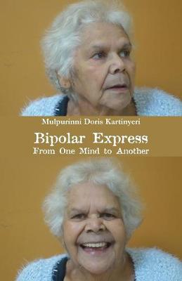 Bipolar Express: From One Mind to Another (Paperback)
