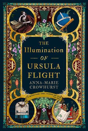 The Illumination of Ursula Flight (Hardback)