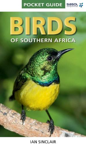 Birds of Southern Africa - Pocket Guide (Paperback)
