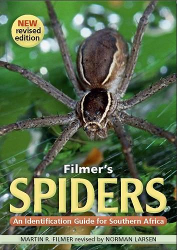 Filmer's spiders: An identification guide to Southern Africa (Paperback)