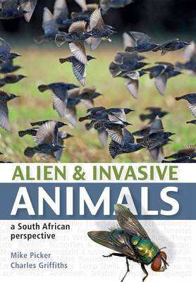 Alien & Invasive Animals: A South African Perspective (Paperback)