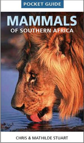 Pocket guide mammals of Southern Africa (Paperback)