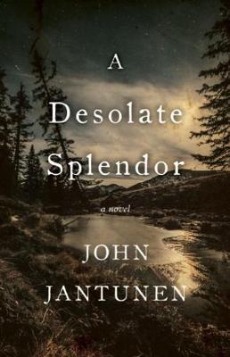 A Desolate Splendor: A Novel (Paperback)