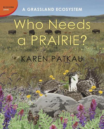 Who Needs A Prairie?: A Grassland Ecosystem (Hardback)