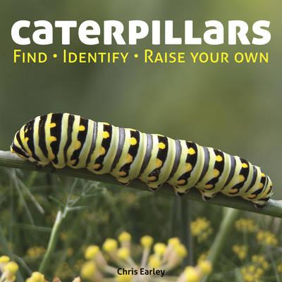 Caterpillars: Find - Identify - Raise Your Own (Hardback)