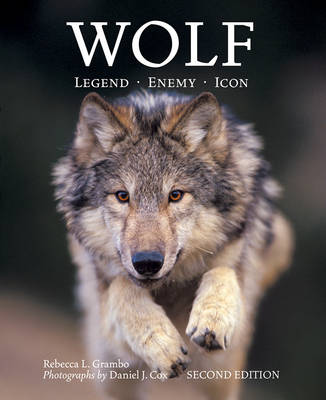 Wolf: Legend, Enemy, Icon (Paperback)