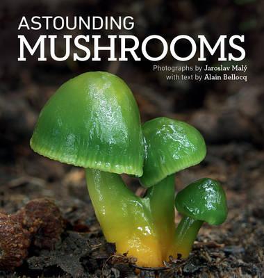 Astounding Mushrooms (Hardback)