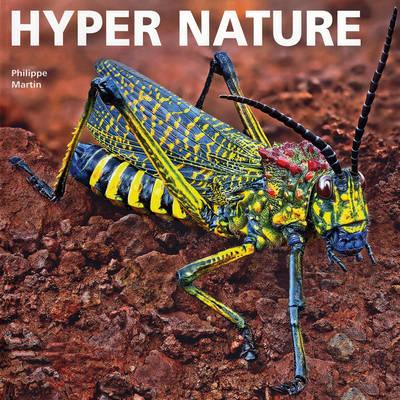Hyper Nature (Hardback)