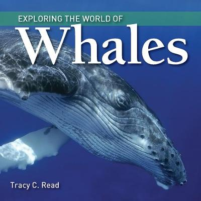 Exploring the World of Whales - Exploring the World of... (Hardback)