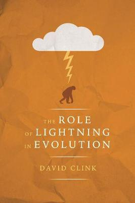The Role of Lightning in Evolution (Paperback)
