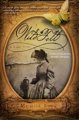 Wild Fell: A Ghost Story (Hardback)