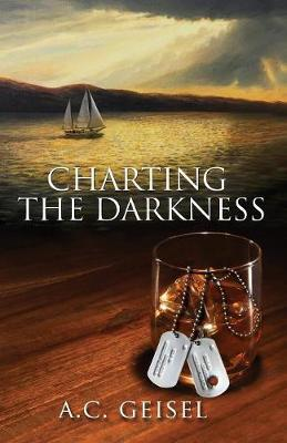 Charting the Darkness, a Novel (Paperback)