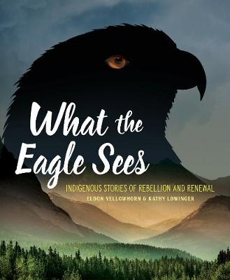 What the Eagle Sees: Indigenous Stories of Rebellion and Renewal (Paperback)
