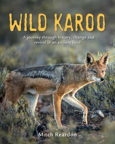 Wild Karoo: A Journey Through History, Change and Revival In An Ancient Land (Paperback)