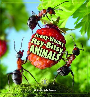 Teeny-Weeny Itsy-Bitsy Animals - The Literacy Tower (Paperback)
