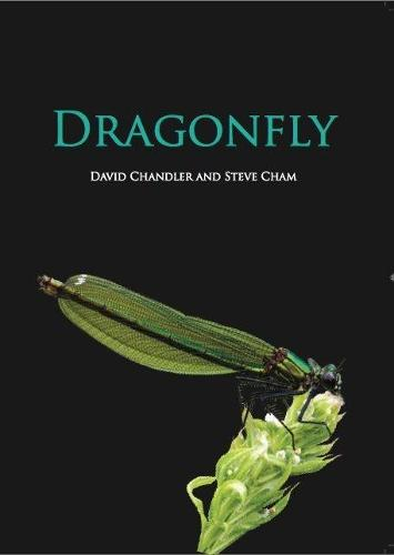 Cover of the book, Dragonfly.