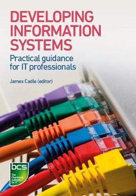 Developing Information Systems: Practical guidance for IT professionals (Paperback)