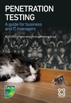 Penetration Testing: A guide for business and IT managers (Paperback)