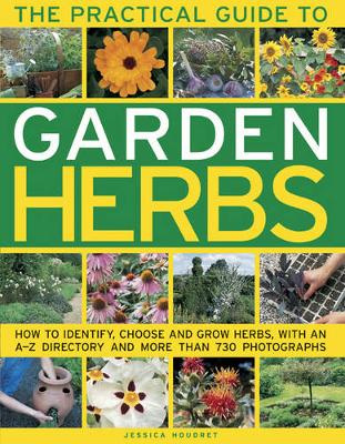 Practical Guide to Garden Herbs (Paperback)