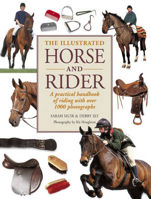 Illustrated Horse and Rider (Paperback)