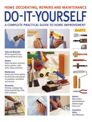 Do-It-Yourself (Paperback)
