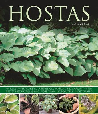Hostas: an Illustrated Guide to Varieties, Cultivation and Care, with Step-by-step Instructions and More Than 130 Beautiful Photographs (Paperback)