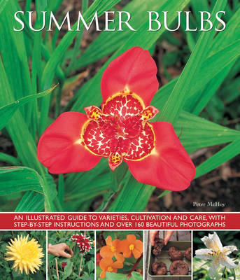 Summer Bulbs (Paperback)