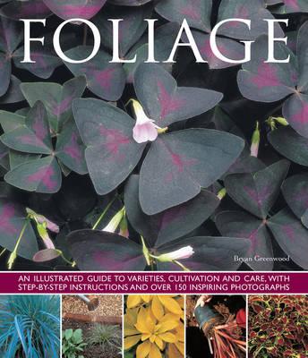 Foliage (Paperback)