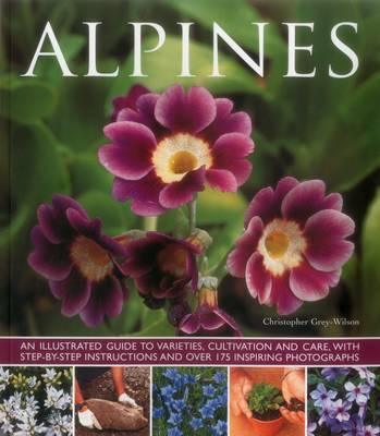 Alpines (Paperback)