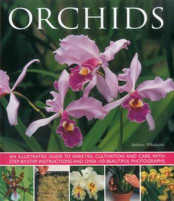 Orchids (Paperback)