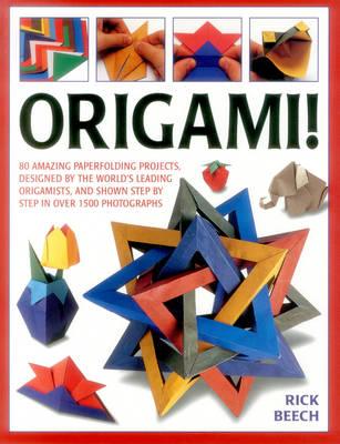 Origami! (Paperback)