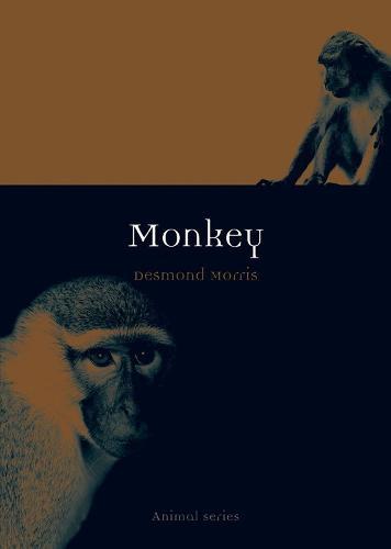 Monkey - Animal Series (Paperback)