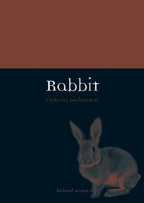 Rabbit - Animal Series (Paperback)