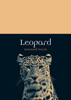 Leopard - Animal (Paperback)