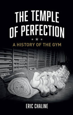 The Temple of Perfection (Hardback)