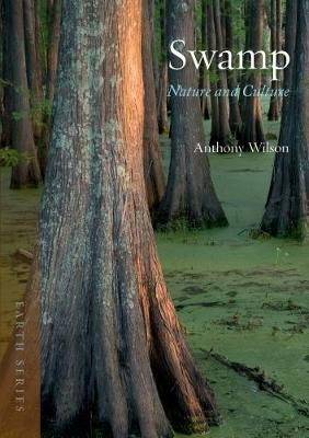 Swamp: Nature and Culture - Earth (Paperback)