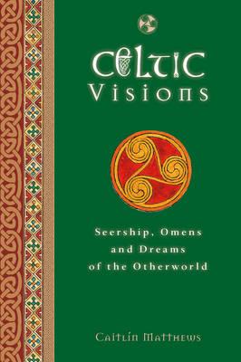 Celtic Visions (Hardback)