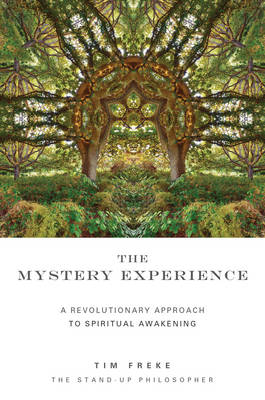 The Mystery Experience (Paperback)