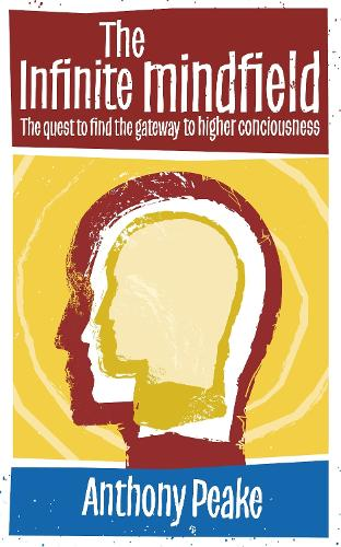 The Infinite Mindfield: A Quest to Find the Gateway to Higher Consciousness (Paperback)