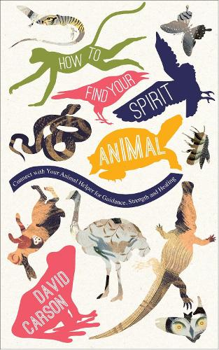 How to Find Your Spirit Animal (Paperback)